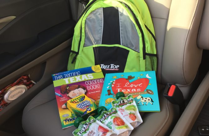 Road Trips with Kids can be difficult, but the secret to an easy ride is healthy snacks and keeping kids busy! Tree Top Apple Sauce Pouches are perfect for summer outings ! Find out why here.