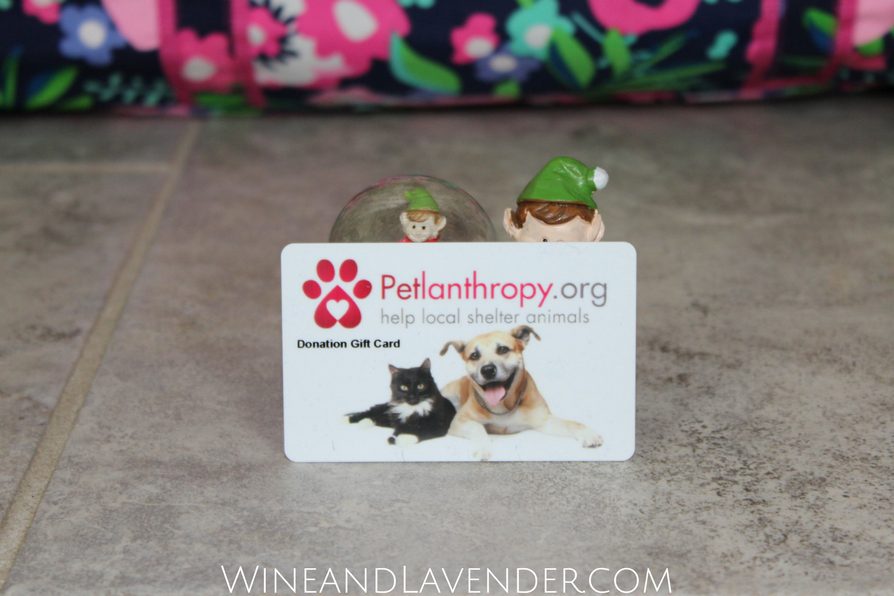 Showing kids kindness through giving is what the holiday season is all about. Find out how Petlanthropy donation gift cards can be a great gift for kids (and pets!) here.